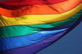 pride month flag.jpg