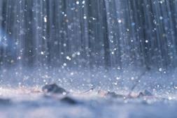 rain earth.jpg